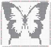 pattern Animals Butterflies