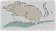 pattern Animals Mice