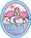 image Weather Sun Animals Flamingo