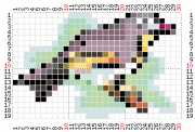 pattern Animals Birds Countries China