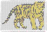 pattern Animals Countries China