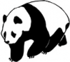 image  Animals Pandas
